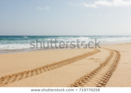 Stock photo: Tire Track in the sand