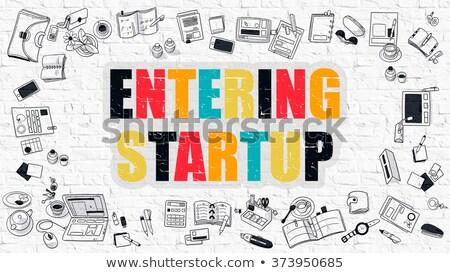 Multicolor Entering Startup on White Brickwall. Doodle Style. Stock photo © tashatuvango