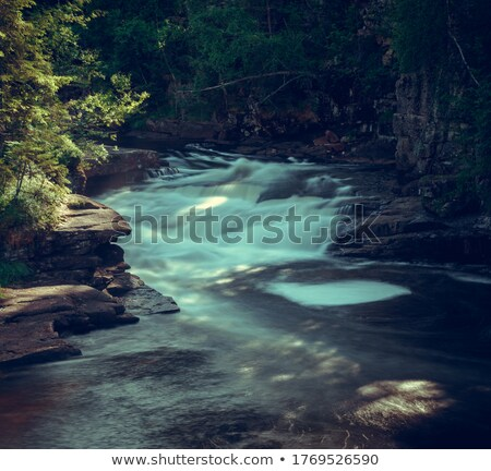 çağlayan park köy orman doğa altın Stok fotoğraf © compuinfoto
