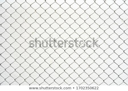 łańcucha · link · ogrodzenia · lesie · Błękitne · niebo - zdjęcia stock © pakete