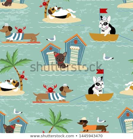 ボート 動物 ビーチ 農家 空 水 ストックフォト © colematt