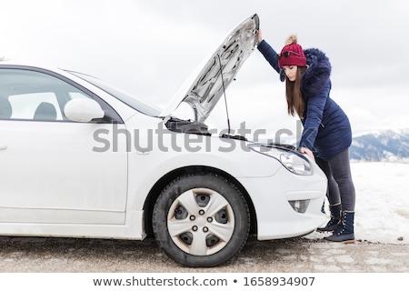 Problem in engine Stock photo © pressmaster