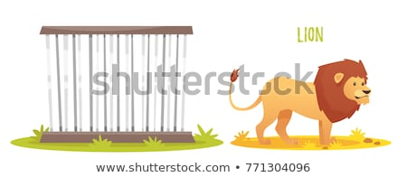 Isolated cage in the zoo Stock photo © colematt