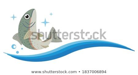 Fraîches fruits de mer truite poissons pierre haut Photo stock © karandaev