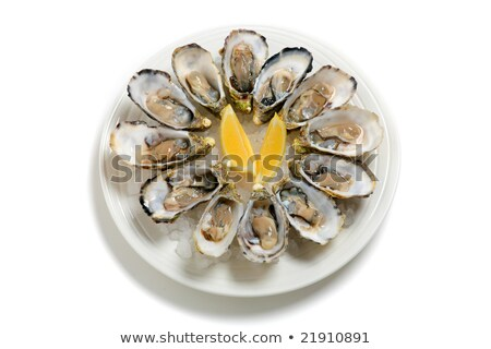 Plate with dozen oysters Stock photo © borisb17