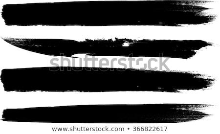 Biały grunge wektora półtonów szczotki zestaw Zdjęcia stock © blumer1979