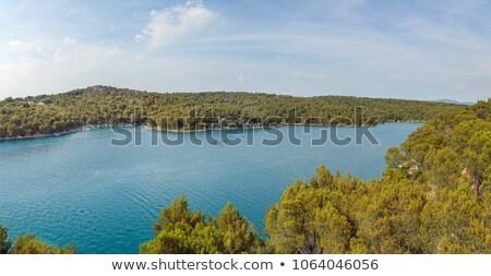 Kroatië strand boom landschap zee Stockfoto © borisb17