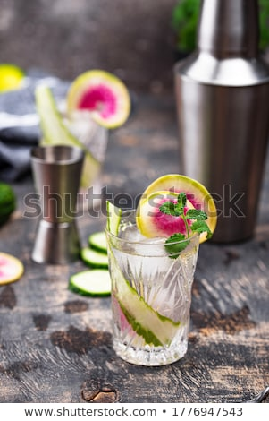 Cocktail with cucumber and radish Stock photo © furmanphoto