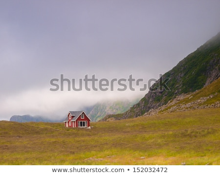 A lone house in a green valley Stock photo © RuslanOmega