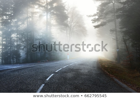 Weg mist landelijk laag zichtbaarheid zomer Stockfoto © timbrk