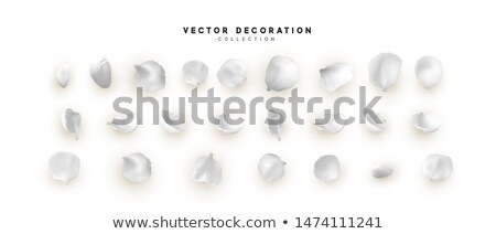 abstract spring floral decorative isolated background vector ill stock photo © WaD