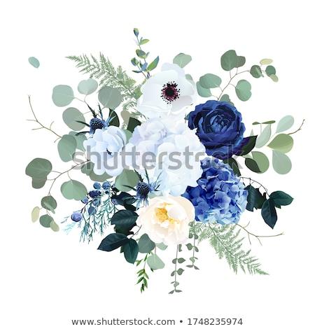 Bağbozumu karanlık mavi çiçek vektör çiçek ışık Stok fotoğraf © 0mela