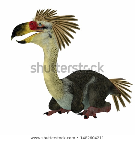 Phorusrhacos Longissimus Stock photo © AlienCat
