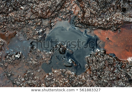 Toxic Soil Stock photo © Lightsource