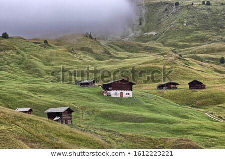 Typical building in South Tyrol Stock photo © Coffeechocolates
