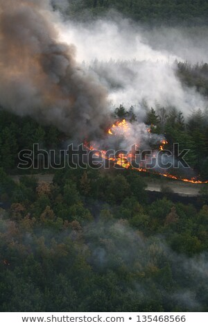 fire in the forest of wildfire photographed from a helicopter stock photo © nemar974