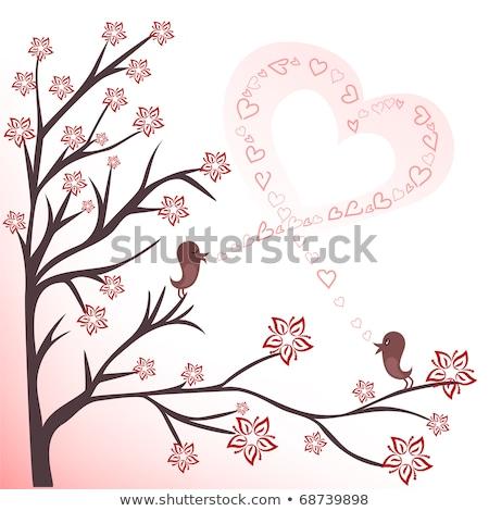 Dos aves coquetear cantando rama primavera Foto stock © HASLOO