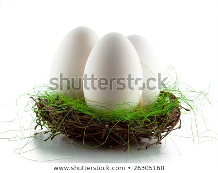 белый яйцо способом многие Сток-фото © axstokes