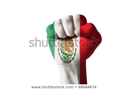 Fist Painted In Colors Of Mexico Flag Foto stock © vepar5