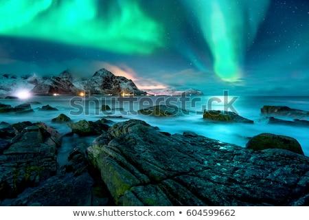 tél · tájkép · kunyhó · erdő · tipikus · erdő - stock fotó © zzve