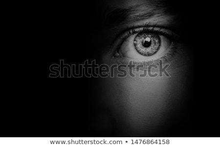 Ojo ojo de la cerradura curiosidad humanos agujero viendo Foto stock © Mikko