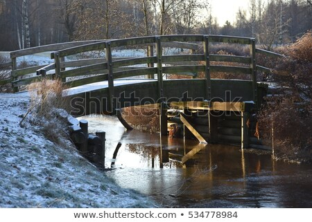 small bridge on the background of a winter landscape stock photo © ruslanomega