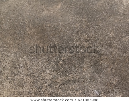 Seamless Texture of Rocky Soil. Stock photo © tashatuvango