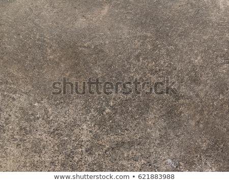 seamless texture of rocky soil stock photo © tashatuvango