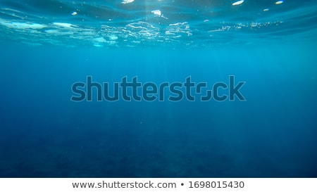 Deep blue sea underwater Stock photo © Anterovium