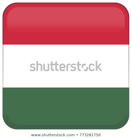 Hongarije vlag knop zwarte toetsenbord Stockfoto © tashatuvango