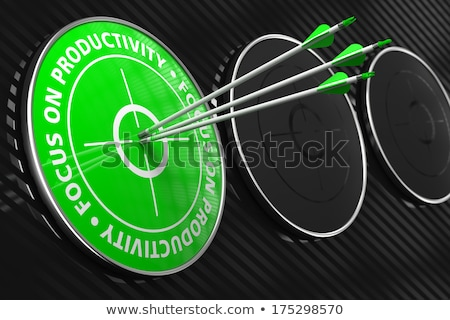 Focus on Productivity Slogan - Green Target. Stock photo © tashatuvango
