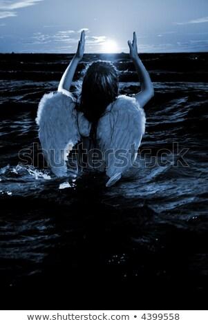 cute · piccolo · angelo · pregando · focus · ali - foto d'archivio © nejron