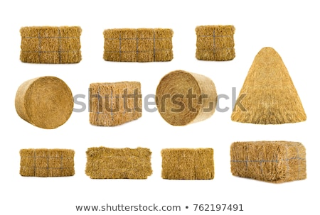 Feno fardo palha fazenda agricultura Foto stock © emattil
