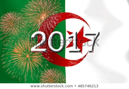 флаг сжигание Алжир войны кризис огня Сток-фото © michaklootwijk