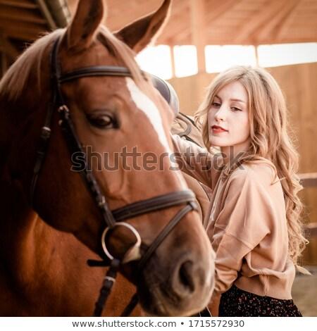 Cavalo família fazenda imagem instagram vintage Foto stock © taviphoto