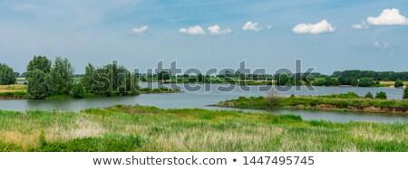 Dutch river landscape Stock photo © ivonnewierink