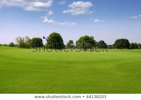 reggel · golf · férfi · golfozó · korai · tájkép - stock fotó © lunamarina