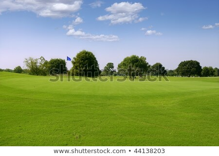 Foto d'archivio: Green Golf Grass Landscape In Texas
