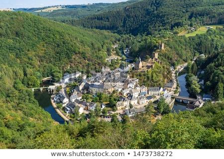 vieux · médiévale · château · paysage · couleur · illustration - photo stock © hofmeester