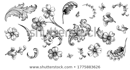 antique heraldic ornaments stock photo © elak