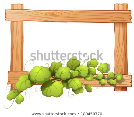 a wooden frame with a leafy plant stock photo © bluering