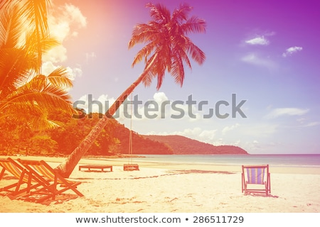 Beautiful beach background for summer travel with sun,coconut tree and beach wooden bed on sand with Stock photo © icemanphotos