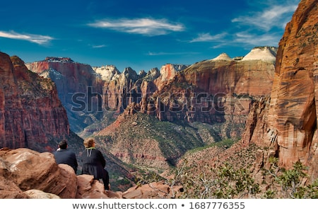 Famous Zion National Park, Utah, USA Stock photo © CaptureLight