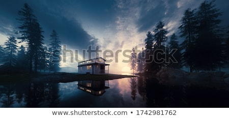 Abandoned house in the forest Stock photo © tracer