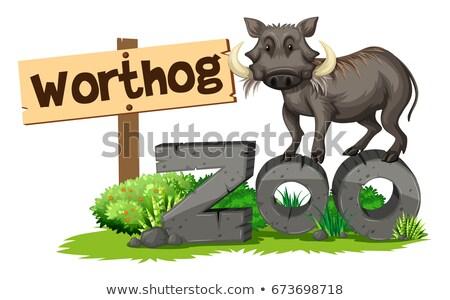 Stock fotó: állatkert · illusztráció · természet · háttér · művészet · felirat