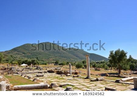 Pillar ruins at Ancient Messini, Messinia, Peloponnese, Greece stock photo © ankarb