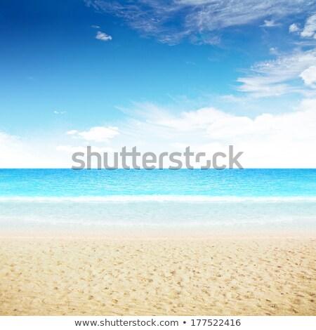 Heldere hemel eiland strand zomer shot hemel Stockfoto © ixstudio