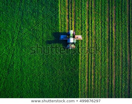 trattore · coltivato · mais · campo - foto d'archivio © stevanovicigor