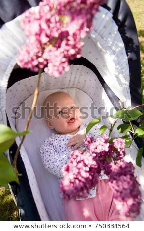Baby kinderwagen bloesem medische hart Stockfoto © IS2