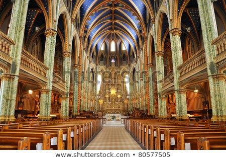 Notre Dame Katedrali bazilika Ottawa ontario Kanada şehir Stok fotoğraf © benkrut